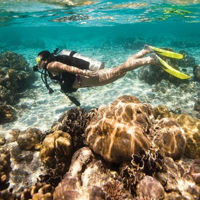 Try Scuba in Bali with Crystal Divers